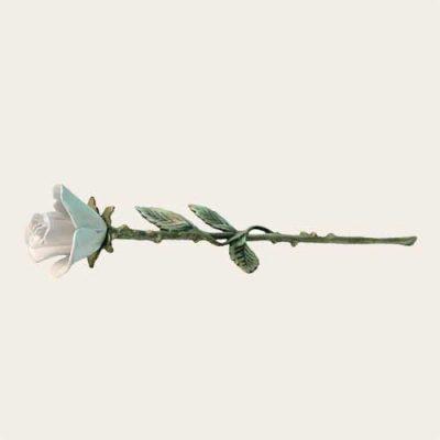 White Keepsake Rose